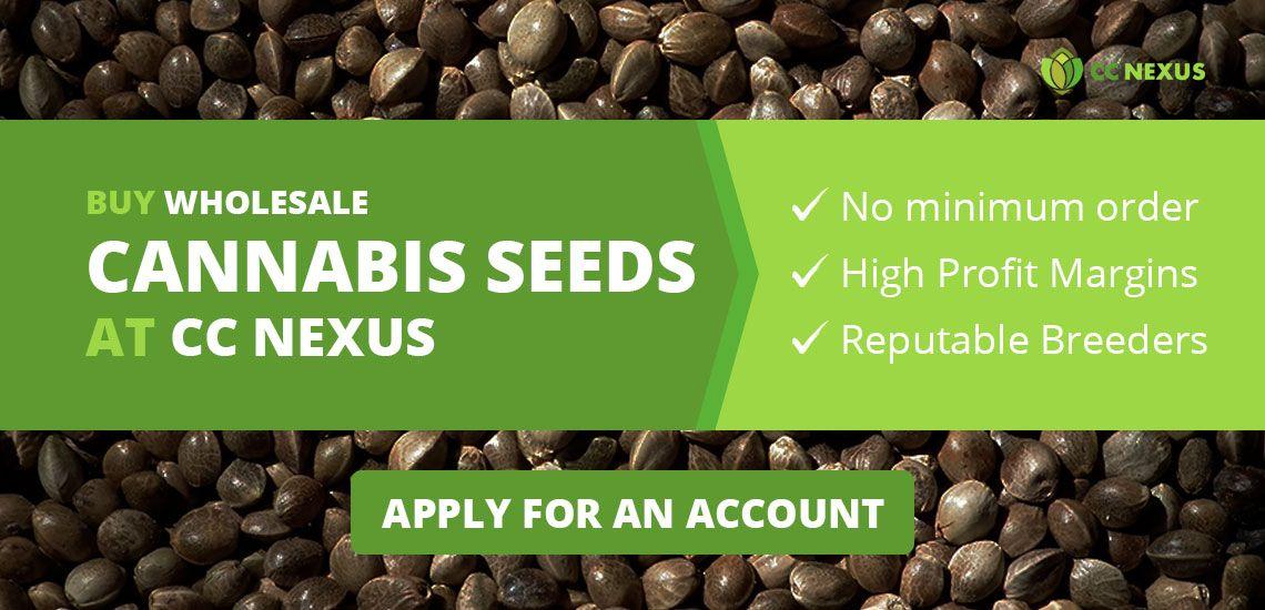 Buy wholesale cannabis seeds