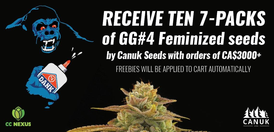 Canuk Seeds Promo